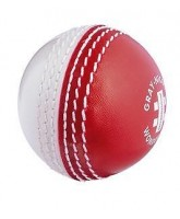 Cricket Ball Gray-Nicolls Wonderball
