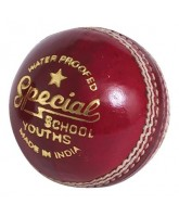 Cricket Ball Readers Special School (Junior)
