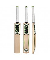Gunn & Moore Paragon 101 cricket bat