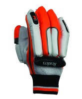 Cricket Batting Gloves Readers R1